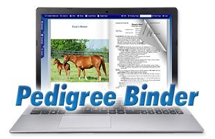 Pedigree Binder